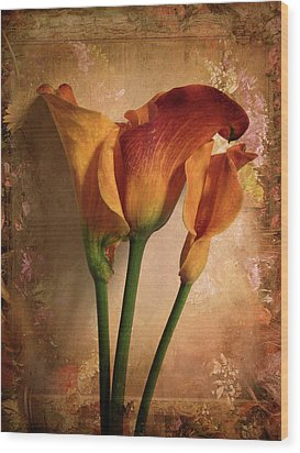 Vintage Calla Lily Wood Print by Jessica Jenney