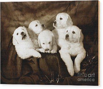 Vintage Festive Puppies Wood Print by Angel  Tarantella