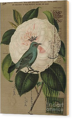 Vintage French Botanical Art Pink Rose Teal Bird Wood Print by Cranberry Sky