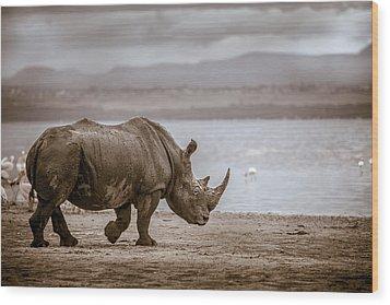 Vintage Rhino On The Shore Wood Print by Mike Gaudaur