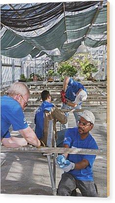 Volunteers At A Botanic Garden Wood Print by Jim West