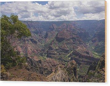 Waimea Canyon 5 - Kauai Hawaii Wood Print by Brian Harig