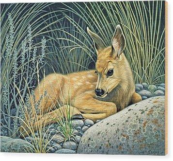 Waiting For Mom-mule Deer Fawn Wood Print by Paul Krapf