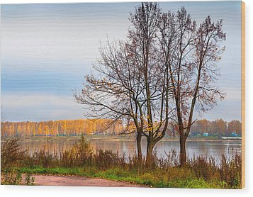 Walk Along The River Bank Wood Print by Jenny Rainbow