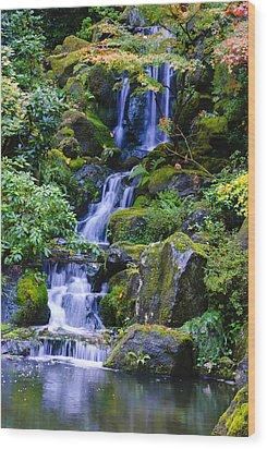 Water Fall Wood Print by Dennis Reagan
