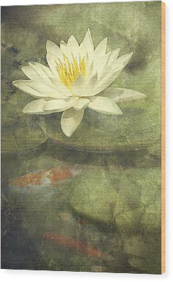 Water Lily Wood Print by Scott Norris