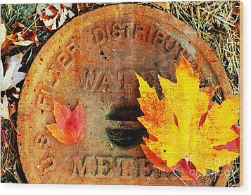 Water Meter Cover With Autumn Leaves Abstract Wood Print by Andee Design