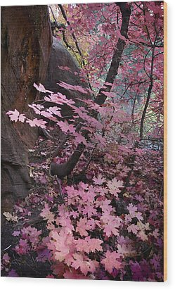 West Fork Fall Colors Wood Print by Dave Dilli