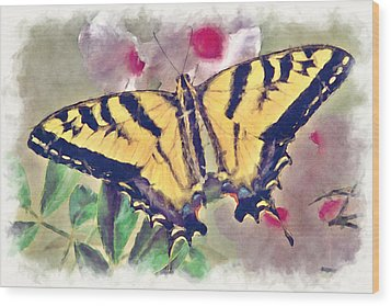 Western Tiger Swallowtail Papilio On Flower Wood Print by Robert Jensen