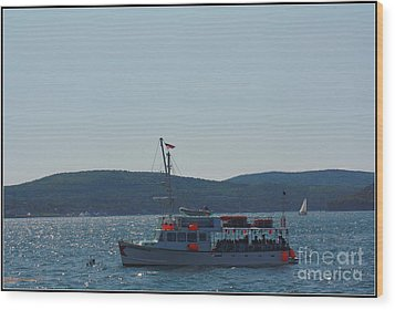 Whale Watching At Bar Harbor Wood Print by Dora Sofia Caputo Photographic Art and Design