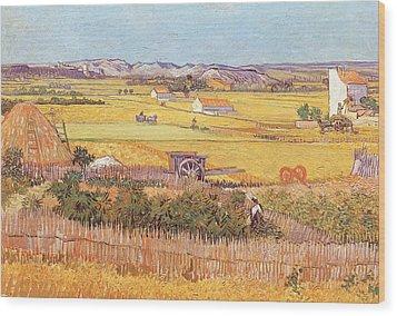 Wheatfields Wood Print by Vincent van Gogh