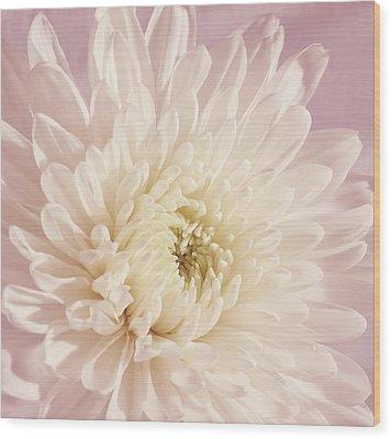 Whispering White Floral Wood Print by Kim Hojnacki