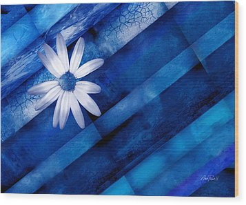 White Daisy On Blue Two Wood Print by Ann Powell