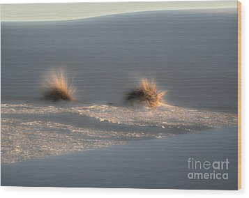 White Sands New Mexico Dune Wood Print by Gregory Dyer