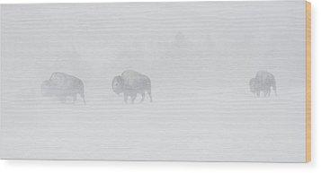 Whiteout Wood Print by Sandy Sisti