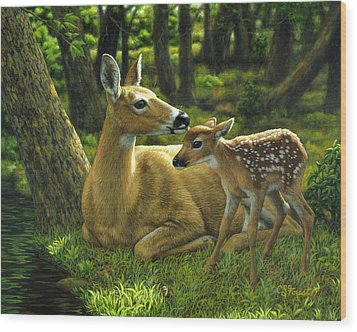 Whitetail Deer - First Spring Wood Print by Crista Forest