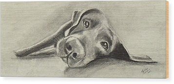 Why Are You Waking Me Up? Wood Print by Marcello Cicchini