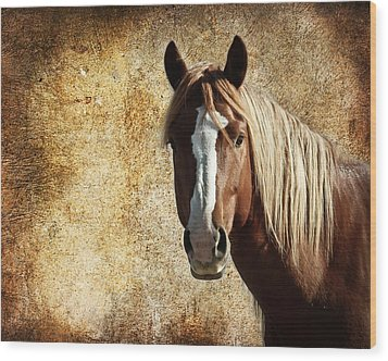 Wild Horse Fade Wood Print by Steve McKinzie