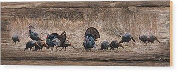 Wild Turkeys Wood Print by Lori Deiter