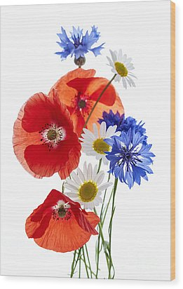 Wildflower Arrangement Wood Print by Elena Elisseeva