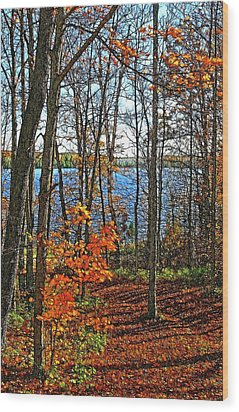 Willow Lake Wood Print by Bill Morgenstern