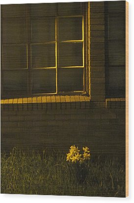 Wind And Window Flower Wood Print by Guy Ricketts