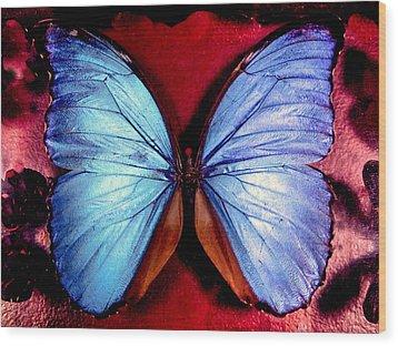 Wings Of Nature Wood Print by Karen Wiles