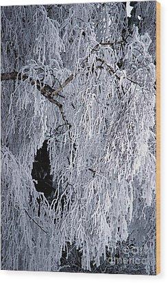 Winter Blanket Wood Print by Sharon Elliott
