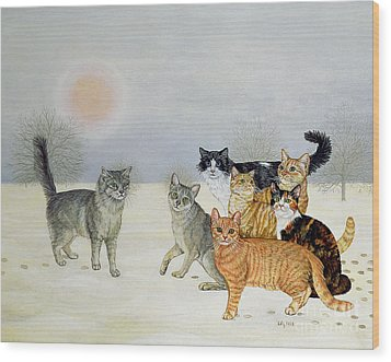 Winter Cats Wood Print by Ditz