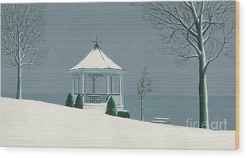 Winter Gazebo Wood Print by Michael Swanson
