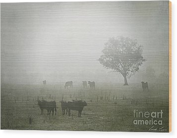 Winter Morning Londrigan 5 Wood Print by Linda Lees