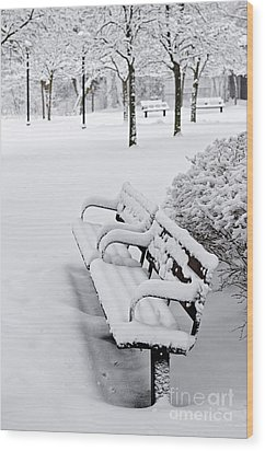 Winter Park With Benches Wood Print by Elena Elisseeva