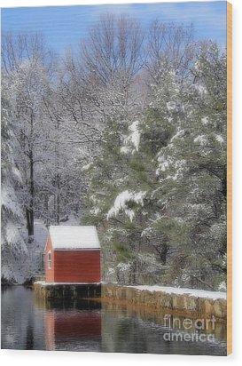 Winter Scene  Wood Print by Karol Livote