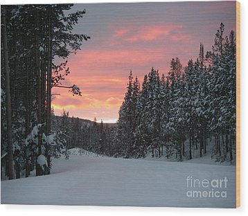 Winter Sunset Wood Print by Jeanette French