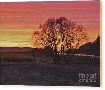Winter Tree With Red Sky Wood Print by Valerie Garner