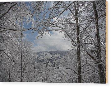 Winter Window Wonder Wood Print by John Haldane