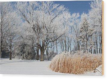 Winter Wonderland Wood Print by Robyn Saunders