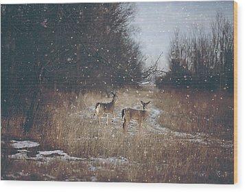 Winter Wonders Wood Print by Carrie Ann Grippo-Pike