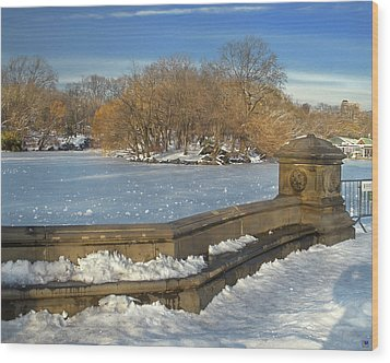 Wintery Afternoon At Bathsheba Terrace Wood Print by Muriel Levison Goodwin
