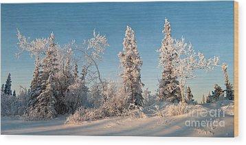 Wintery Wood Print by Priska Wettstein