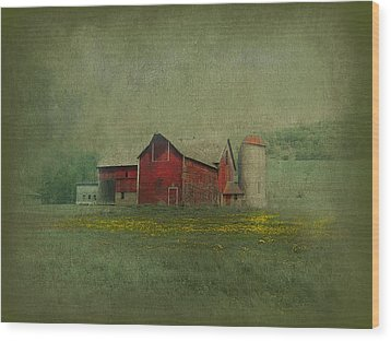 Wisconsin Barn In Spring Wood Print by Jeff Burgess