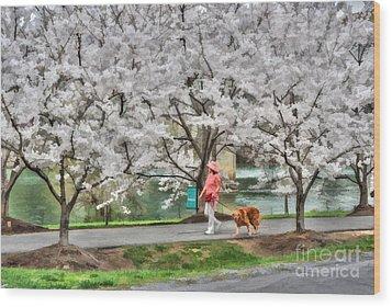 Woman Walking Dog  Rail To Trail Wood Print by Dan Friend