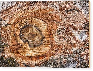 Wood Detail Wood Print by Matthias Hauser