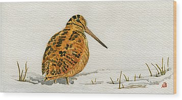 Woodcock Bird Wood Print by Juan  Bosco