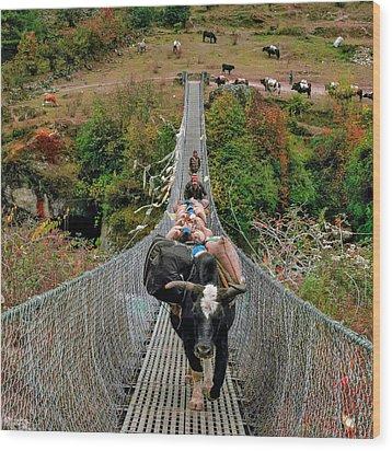 Yaks On Rope Bridge Wood Print by Babak Tafreshi