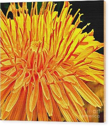 Yellow Chrysanthemum Painting Wood Print by Bob and Nadine Johnston