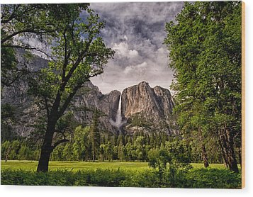 Yosemite Falls Wood Print by Cat Connor