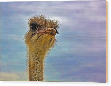 You Talkin To Me Wood Print by Gary Holmes