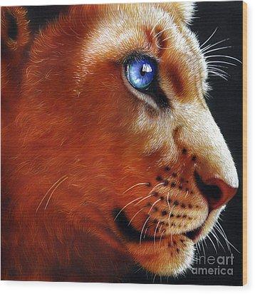 Young Lion Wood Print by Jurek Zamoyski