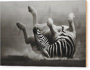 Zebra Rolling Wood Print by Johan Swanepoel